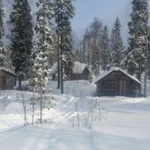 Helkkusen sauna liiteri ja kämppä 2017 helmikuu
